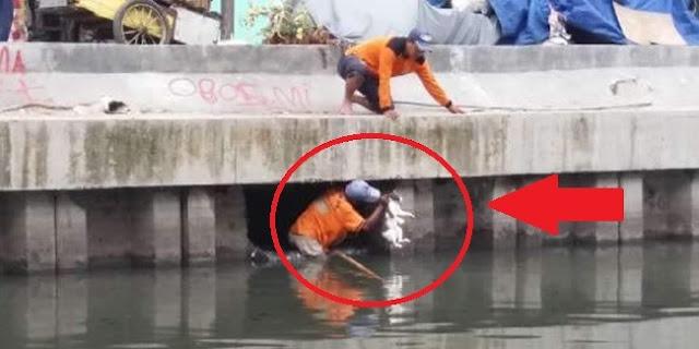 Demi Seekor Kucing, Petugas Kebersihan Ini Rela Masuk Ke Lubang Saluran Air Kotor