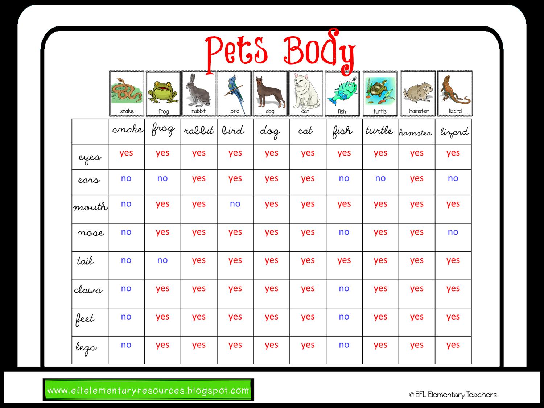 Efl Elementary Teachers Pet Theme For Elementary Language