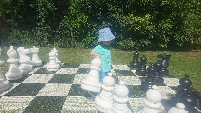 King Henry Arts Cafe, Sassafras, chess