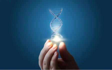 Dampak Penerapan dan Pengembangan Bioteknologi