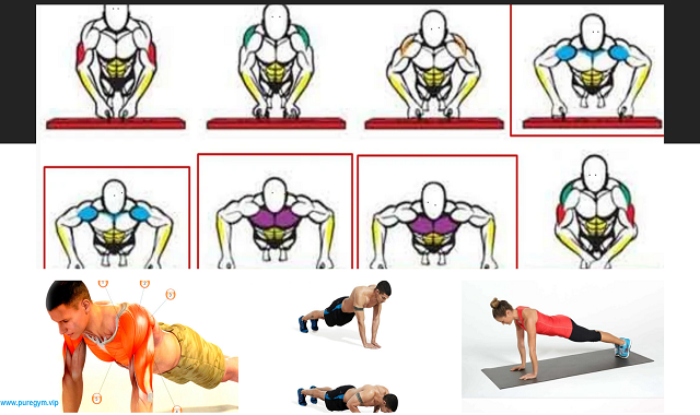 The Most Important PUSH-UP you Can Do At Home