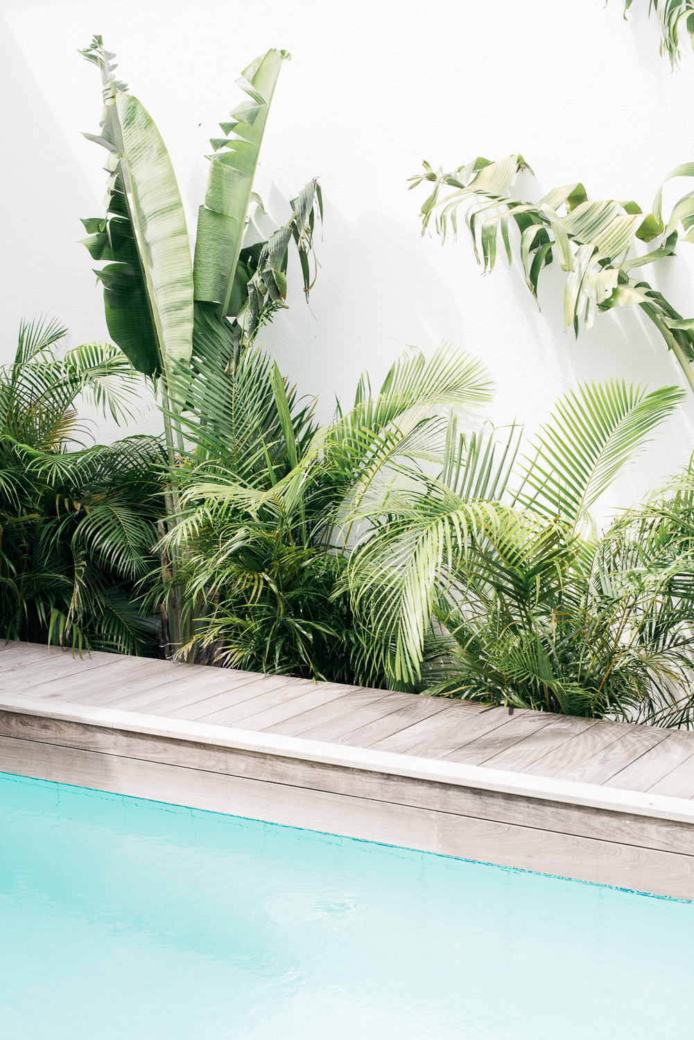 ilaria fatone - summer-mood inspirations - lush vegetation around pool