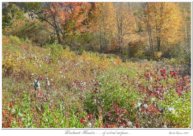 Wachusett Meadow: ... of colored surfaces...