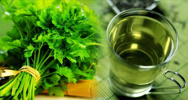 What are the benefits of parsley for kidney ?