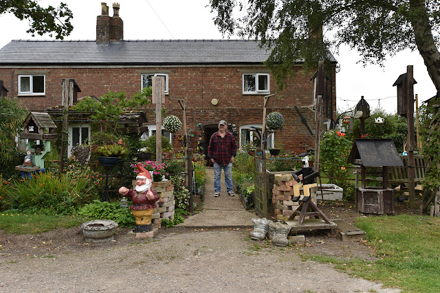 Garden with gnomes