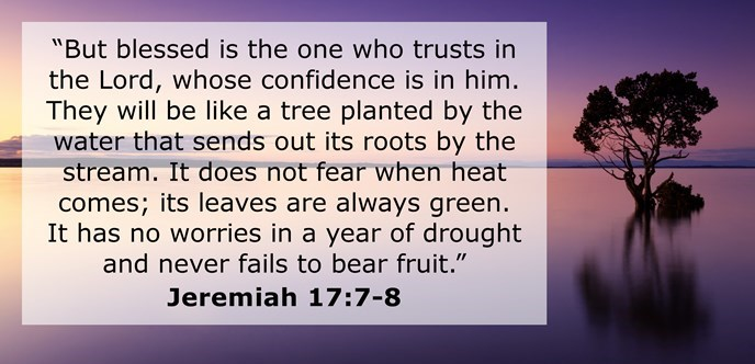 Blessed is the man who trusts in the Lord, whose confidence is in him. He will be like a tree planted by the water that sends out its roots by the stream. It does not fear when heat comes; its leaves are always green. It has no worries in a year of drought.