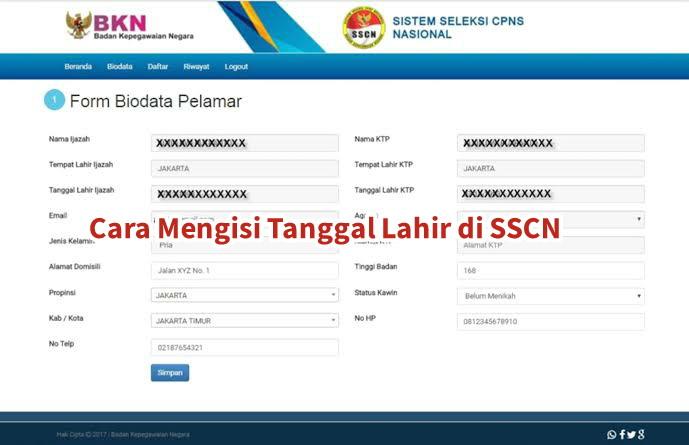 cara mengisi tanggal lahir di sscn