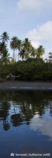 ecologia porto do capim rio ipojuca poesia juca pontes ambiente de leitura carlos romero natureza