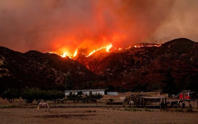 Bozóttüzek tombolnak Kaliforniában, nyolcezer embernek kellett elhagynia az otthonát