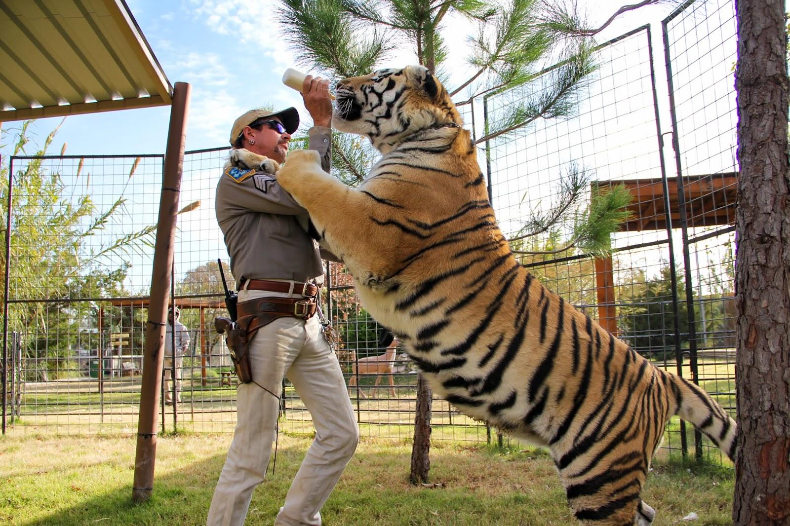 tiger king, król tygrysów, netflix, serial dokumentalny, recenzja