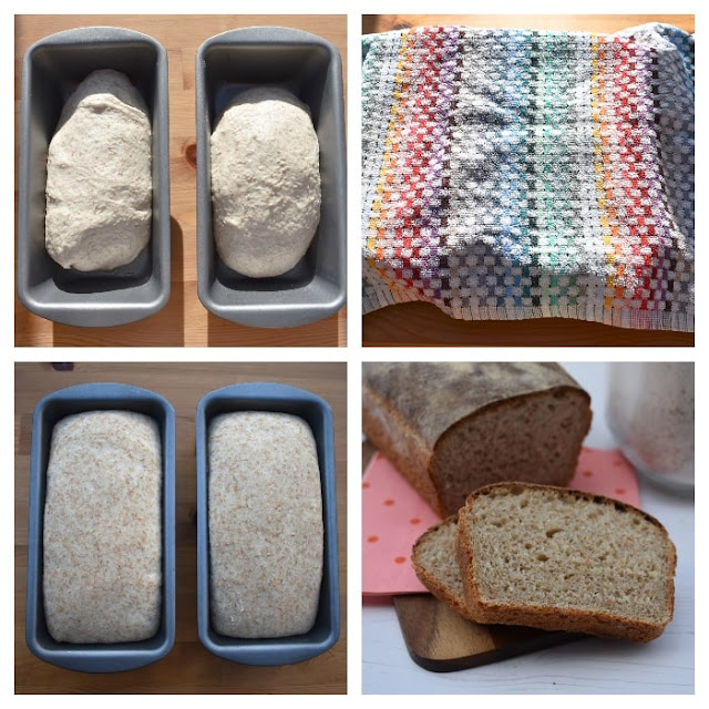 Basic Wholemeal Bread - Step 4 Second Rise in loaf tins covered with a teatowel