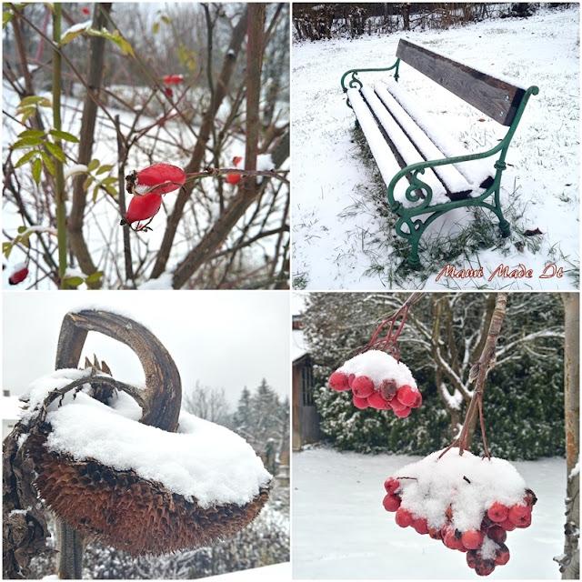 Garten im Schnee - Snowy Garden
