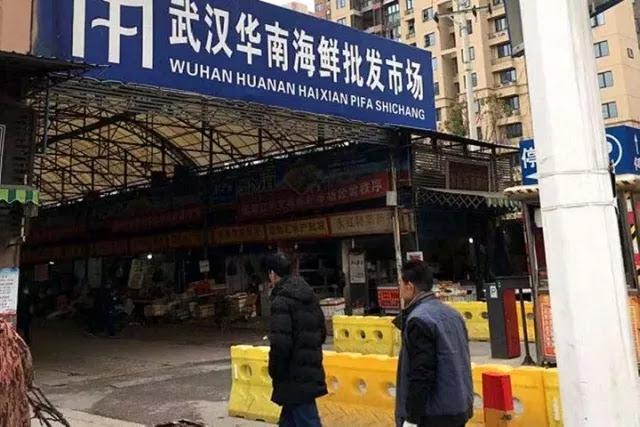 Wuhan China, Pusat Virus Corona Jual Binatang Liar dari Koala Hingga Serigala