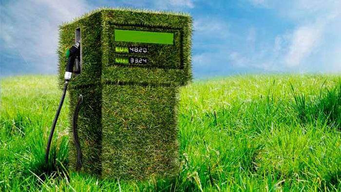Los Biocombustibles o biocarburantes tienen origen orgánico
