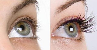 Eye Lash Growth