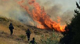 Άπέτρεψε επέκταση της πυρκαγιάς στο δάσος της Φολόης η Πυροσβεστική