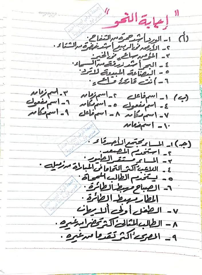 توقعات امتحان اللغة العربية للشهادة الاعدادية ترم ثاني 7