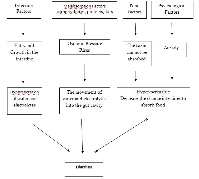 Pathophysiology Pathway Diarrhea
