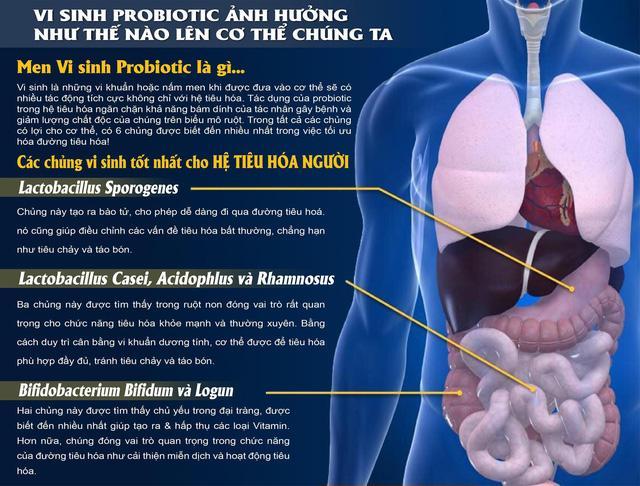 Công nghệ men vi sinh Probiotics