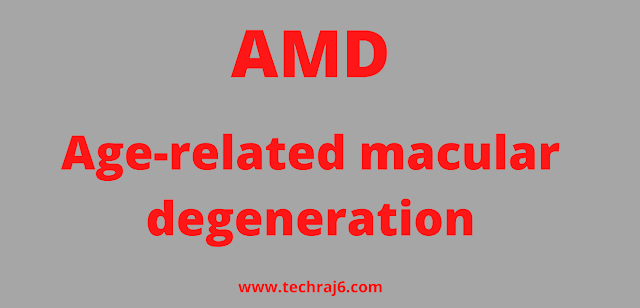 AMD full form, What is the full form of AMD