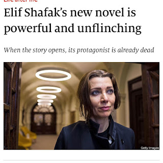 10 Minutes 38 Seconds in This Strange World by Elif Shafak on Nikhilbook img 10