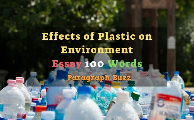 Effects of Plastic on Environment Essay 150 Words for Students