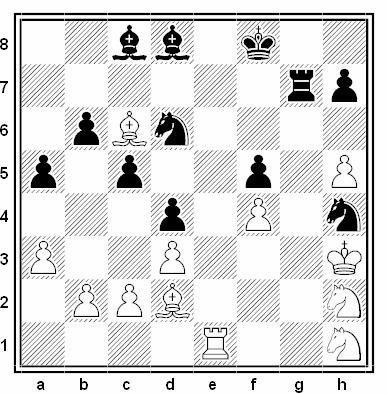 Posición de la partida de ajedrez Bagdasarov - Fedorov (URSS, 1983)