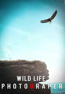 Wild Life New Background Free Stock Image