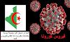 الجزائر تسجل أكبر حصيلة يومية بإصابات بكورونا منذ تفشي الفيروس فيها