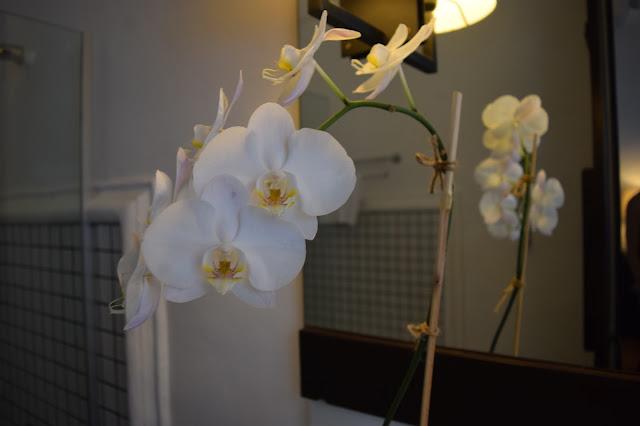 Rachamankha Hotel Chiang Mai Orchid