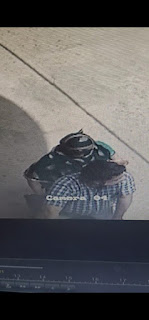 कोरोना की गाइड लाइन का चोर जमकर फायदा हुटा रहे