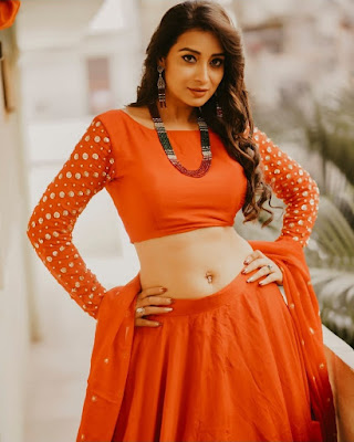 Bhanu Shree (Indian Actress) Biography, Wiki, Age, Height, Family, Career, Awards, and Many More