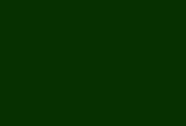 مبهمة كثير تقسيم فرعي خلفية اخضر غامج سادة Arkansawhogsauce Com
