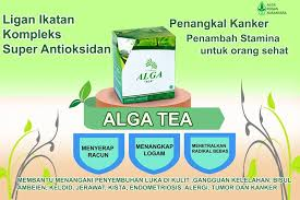 Alga Tea Collagen Cereal