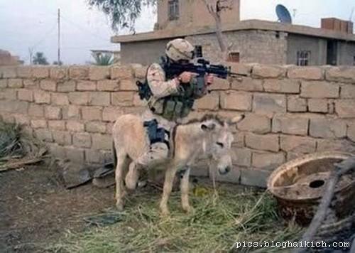 hình ảnh vui quân đội