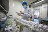 Coronavirus Pharmacies struggling to keep up with the demand for flu jabs