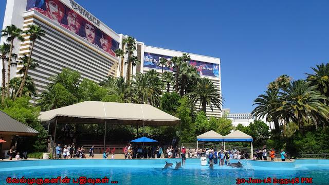 Mirage Casino Las Vegas