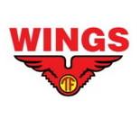 Lowongan Kerja Aceh Wings Group