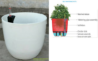 self watering pots