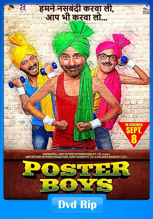 Poster Boys 2017 Hindi 480p DvDRip 400MB Download And Watch Online