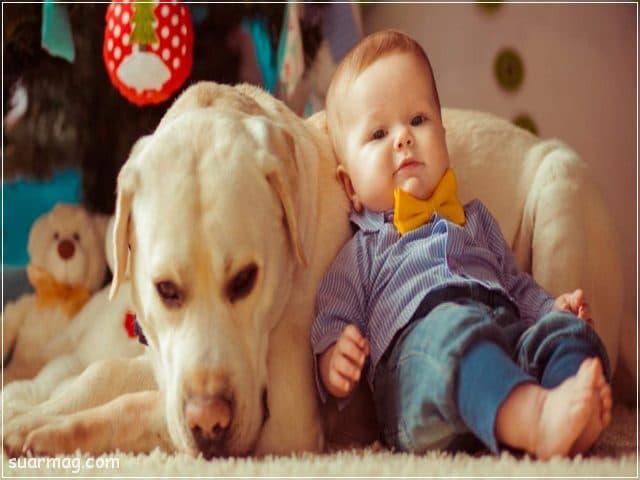 احلى صور اطفال 8   Best pictures of children 8