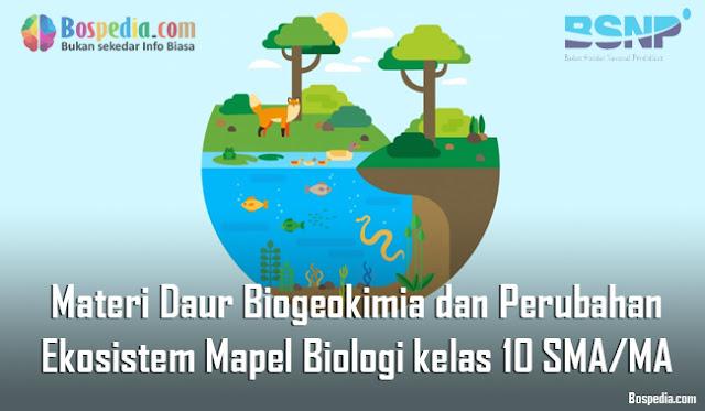 Materi Daur Biogeokimia dan Perubahan Ekosistem Mapel Biologi kelas 10 SMA/MA
