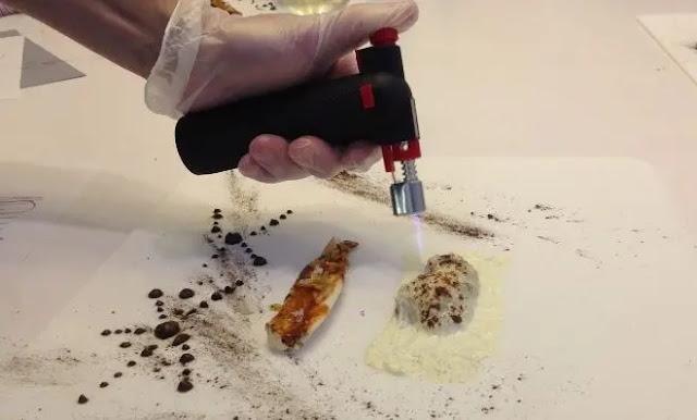 Coast sole with creamy toasted mushrooms with black garlic
