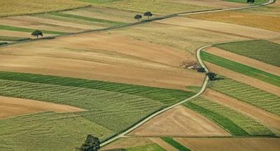 Верховная Рада продлила мораторий на продажу земли сельхозназначения до 1 января 2020 г