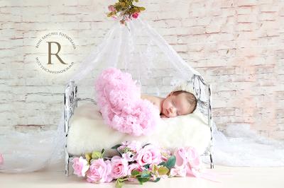 fotos de bebê recém-nascido newborn