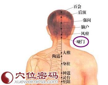 啞門穴位 | 啞門穴痛位置 - 穴道按摩經絡圖解 | Source:xueweitu.iiyun.com