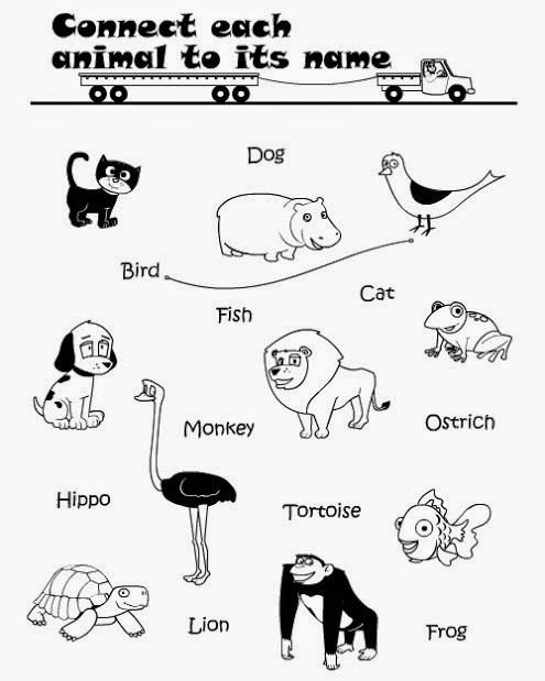 Kids Page: Printable Connect Wild Animals Name Worksheet