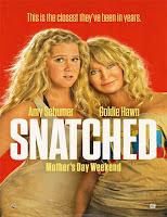 Poster de Snatched (Viaje salvaje)