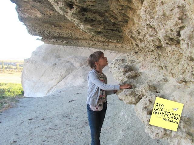 окаменелости Белой скалы