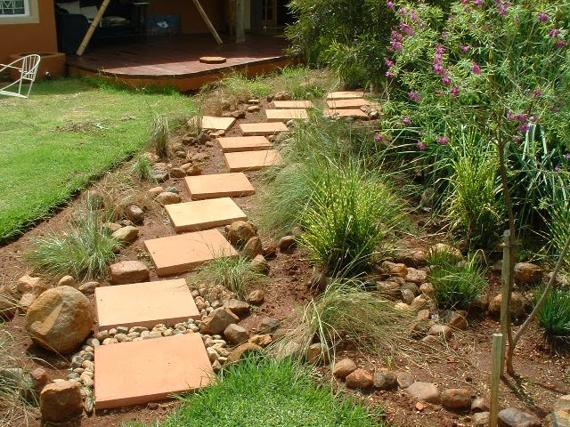 Gardening in africa ornamental grasses in the garden for Decorative lawn grass